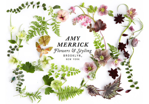 missmossblog:  Amy Merrick   Some really lovely inspiration photos for the bouquet.  Like these: