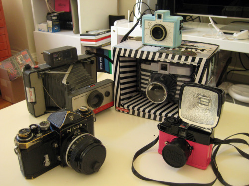 fluorescent:  My camera collection.  Left to right: Nikon F, Polaroid 104, Golden Half (Chelsea Maika Edition), Diana+ (Parisian Edition), Diana Mini (En Rose Edition). My Diana is still in the box because I haven't bought 120 film since my Diana+ (Dreamer Edition) broke.  I should bust it out soon. *super cool collection*