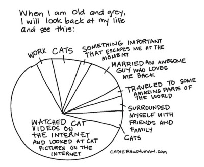 catversushuman:  Does your pie chart look more or less similar?
