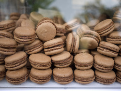 Dark chocolate macarons with truffle ganache, Rochelle Adonis. Photo by The Food Pornographer