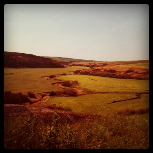 Today's scenic vista #Palouse #cycling (Taken with instagram)