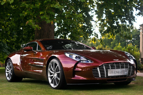 cartastic:  Aston Martin One-77 at the Concours D'Elegance 2011 at Hurlingham Club in London. Photo by Bjorn Nieborg.