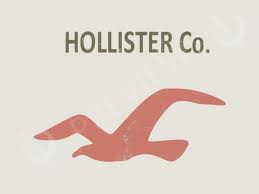 I LOVE LOVE LOVE HOLLISTER