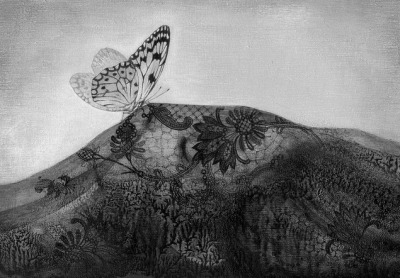 journeytoenlightenment:  A painting by Mao Hamaguchi   Dreaming is one wing of a butterfly and waking is the other. Each wing  tells half the story of life to the other, mirroring each other  ceaselessly to keep aloft. It is at the heart, where the two wings meet,  that the substance of us is ripened.