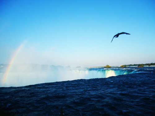 cornersoftheworld:  Niagara Falls, Canada. (submitted by desichica)