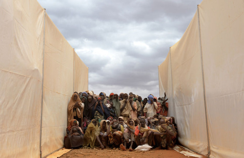 Somali refugees who recently crossed the border  from Somalia into southern Ethiopia cluster between two food tents as  they wait to be called to collect food aid at the Kobe refugee camp, on  July 19, 2011. Ethiopian authorities and non-governmental organizations  have accommodated almost 25,000 refugees at the camp since it was set up  less then three weeks ago. (Roberto Schmidt/AFP/Getty Images) #