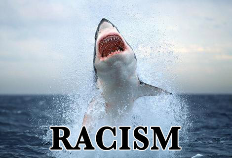 funnyordie:  5 Things Sharks Find Offensive About Shark Week It's one slap of the shark face after another with these guys.