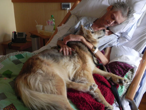 Cedar Rapids Community Fulfills Dying Homeless Man's Last Wish to See His Dog Incredible story about a dying homeless man's last wish to see his  dog one last time before he dies. The Cedar Rapids community showed  amazing compassion and selflessness to make it happen. Rest in peace, Mr. McClain.