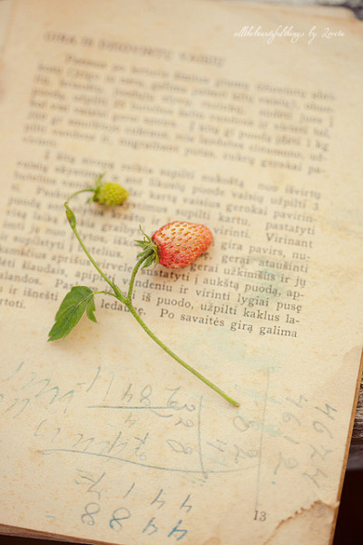 ♥♥♥ by loretoidas on Flickr.
