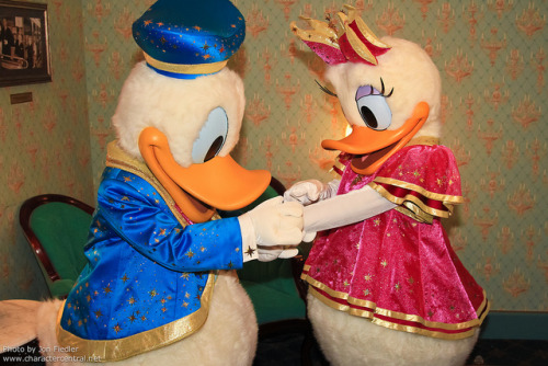 HKDL July 2011 - Meeting Donald and Daisy by PeterPanFan on Flickr.