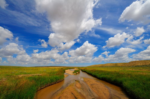 schnitzerphoto:  Prairie: Big Sky
