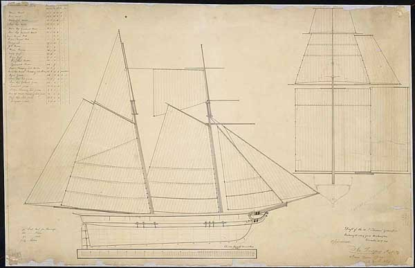"First Cruise of the Schooner USS Grampus  ""Draft of the U.S.S. Schooner 'Grampus,' building at Navy Yard, Washington, DC"" Designed by Henry Eckford, Drawing by Charles Cassell, December 22, 1820, Ink on paper 25"" x 38 1/2""  On August 16, 1822, during its first cruise, the schooner USS Grampus encountered a Puerto Rico-based pirate ship flying Spanish colors and sailing under bogus privateer papers. The American ship quickly reduced the outlaw vessel to a floating wreck. Sailmaker Charles Cassell drew this plan showing the size and shape of the schooner's sails."