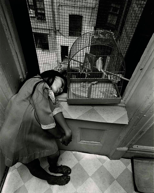Bruce Davidson       Girl with Bird in Cage, New York City      1966