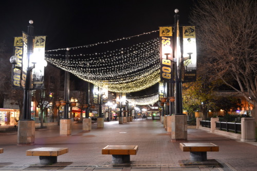 Pearl Street at night.