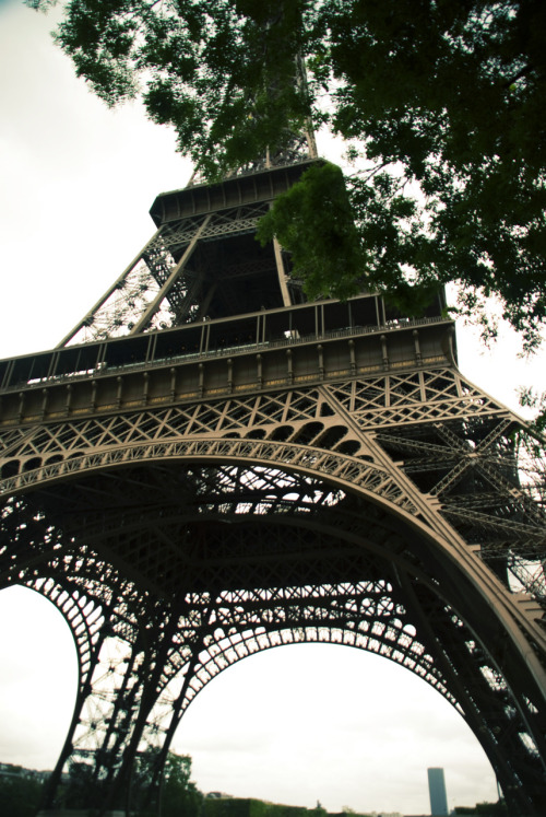 Tour Eiffel, Paris <3 www.liliseidl.com