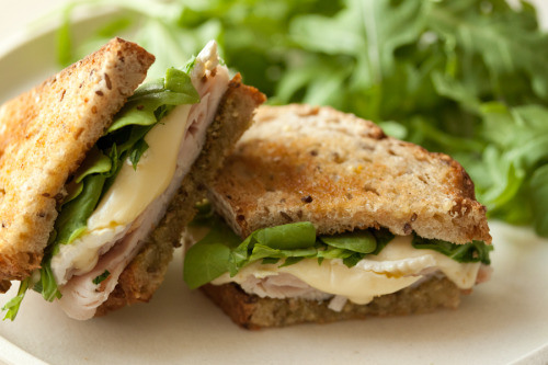 dietcokeandasmoke:  soul-ache:  elafant:  turkey,brie and pesto panini  get in my mouthhhhhh  you are looking fantastic today!xxxxx