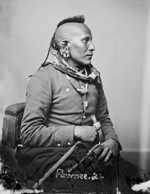 ausetkmt:  As-Sau-Taw-Ka (White Horse), Pawnee