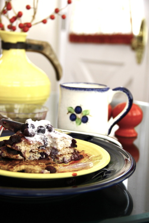 Blueberry Oatmeal Protein Pancakes workin' it for the camera  (post-devouring)