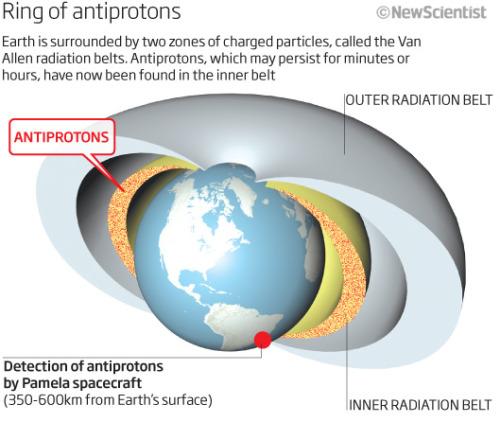 cozydark:  Antiproton ring found around Earth | Antiprotons appear to ring the Earth, confined by the planet's magnetic field lines. The antimatter, which may persist for minutes or hours before annihilating with normal matter, could in theory be used to fuel ultra-efficient rockets of the future. Charged particles called cosmic rays constantly rain in from space, creating a spray of new particles - including antiparticles - when they collide with particles in the atmosphere. Many of these become trapped inside the Van Allen radiation belts, two doughnut-shaped zones around the planet where charged particles spiral around the Earth's magnetic field lines. Satellites had already discovered positrons - the antimatter partners of electrons - in the radiation belts. Now a spacecraft has detected antiprotons, which are nearly 2000 times as massive. continue reading