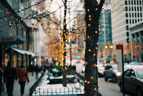 justbesplendid:  tree lights