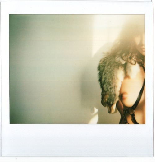 Polaroids by Erik Brunetti