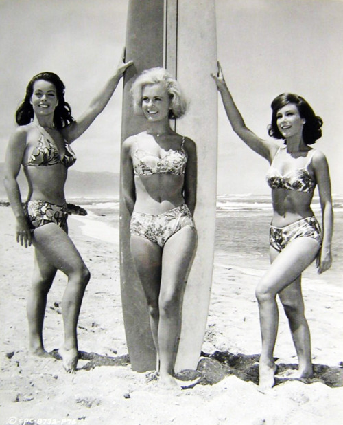 "Susan Hart, Shelley Fabares, and Barbara Eden in ""Ride The Wild Surf"" 1964"