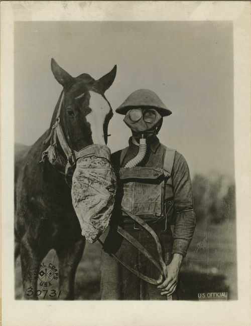 1914 - WWI Gas Masks - Human and Horse. I heard that the WWI horse gas masks had these odd blinder-like goggles, but I've yet to see a picture of one. It would make sense that you wouldn't want your horse going blind, but it seems pretty difficult to make functional goggles that you could put on a horse in short order. The gas mask, though, you just slip over the nose and tighten the cinch. Much easier.