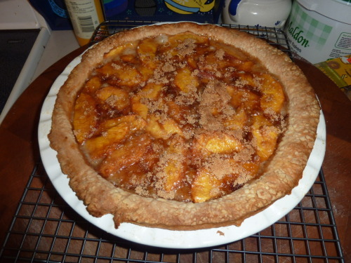 Homemade peaches and cream pie.  My husband made it.  I didn't marry him *just* for his baking skills, but that would have been enough.