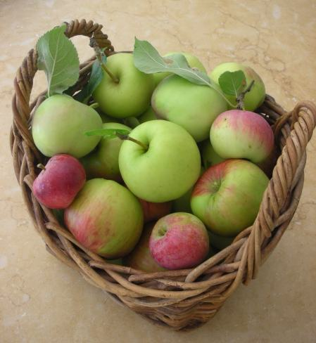 thereluctantrawfoodist:  Gonna make some raw apple sauce right now x   YUM!