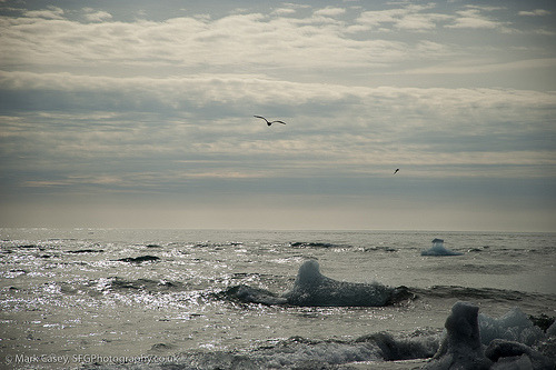 theworldwelivein:  Beach at Jökulsárlón, Iceland©  SciFiGeek