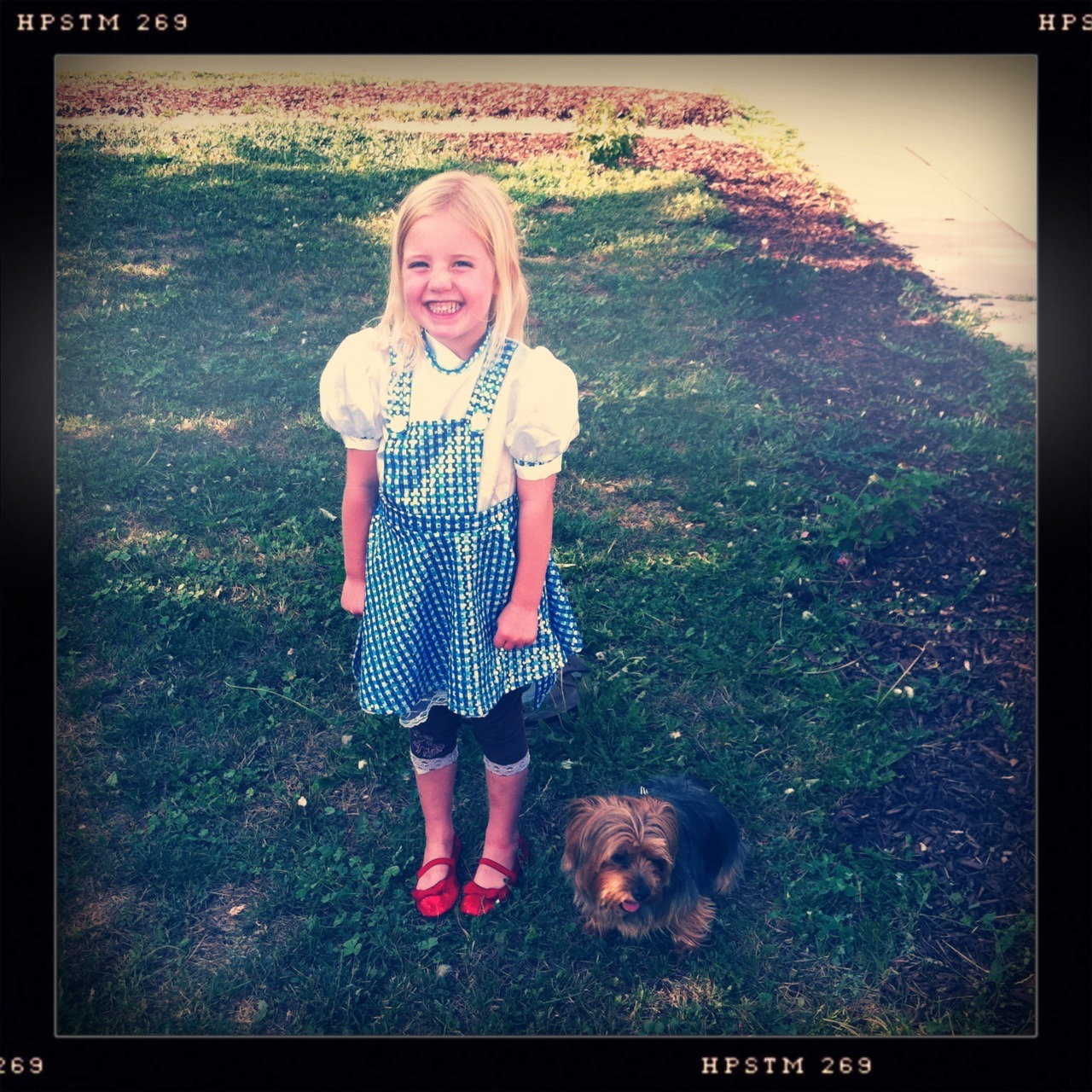 Dorothy, and Toto Too Taken with Hipstamatic, Tejas Lens, Pistil Film, No Flash.