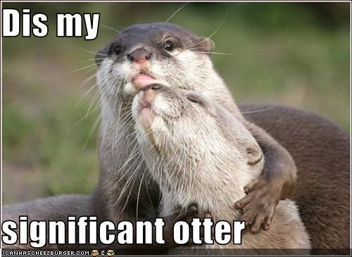 Awkward puns + adorable otters = cute.