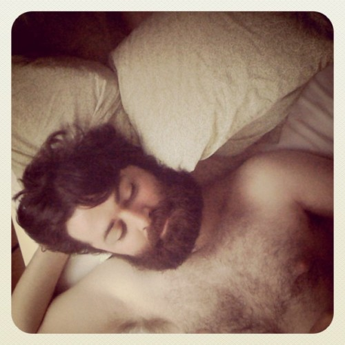 finchdown:  Good morning (Taken with instagram)  dude fox