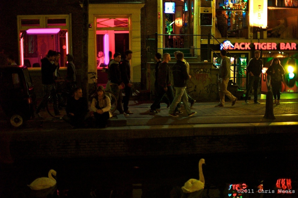 "Amsterdam, Holland:  July, 2011.   Whore swans.  I actually made a photo a couple years ago i called ""whore swans,"" too.  They're only whores because they work for bread.  Wait … I guess that's the same for the other … whores.  Pardon the pun.  They could be living in Denmark, though. ;)  Then they could REALLY be whores.  Leica M9.  35 'lux.  Aperture » ColorEfex Pro.x"