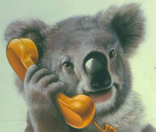 """Hello, this is Brandon.  Why yes, I am interested in saving more on my long distance…"" OR: nedhepburn:  ""Baby? They don't love you like I love you."""