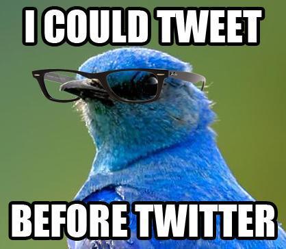 Hipster Bird[via]