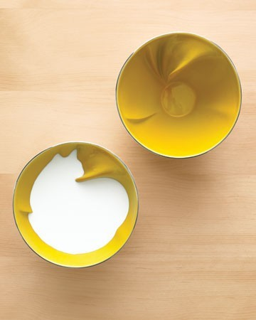 "Bernardaud's ""Geraldine's"" bowls. When you fill them with liquid, the outline of an cat (bird or wolf shapes also available) will appear. photo from Martha Stewart Weddings Spring 2011. Spotted at The Mirthmobile here. They go on to write:   These were designed by Geraldine de Beco, a young French designer, for Bernardaud, a fancy French porcelain manufacturer. So fancy, in fact, that one of these lovely pieces will set you back $189.   Has anyone else thought of this great idea? Can someone Targetize it?"