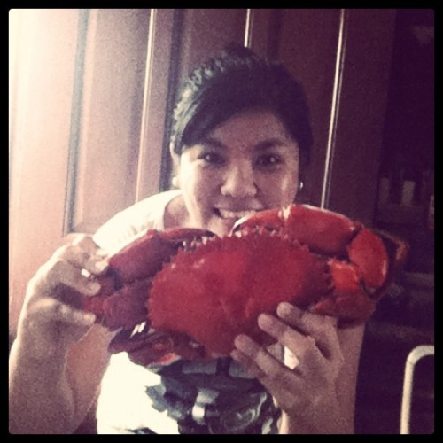 Humongous #crab for #lunch! My friend invited me over to feast on some #seafood. She made some chili crabs (well, she cooked only two of these and there were eight of us who ate them)!!! That's how #big they were! I felt like my teeth were gonna come off after a piece of its shell got stuck between my teeth. :( But nevertheless, it didn't stop me from eating two pincers. LOL! Nomnomnom! :D (Taken with instagram)