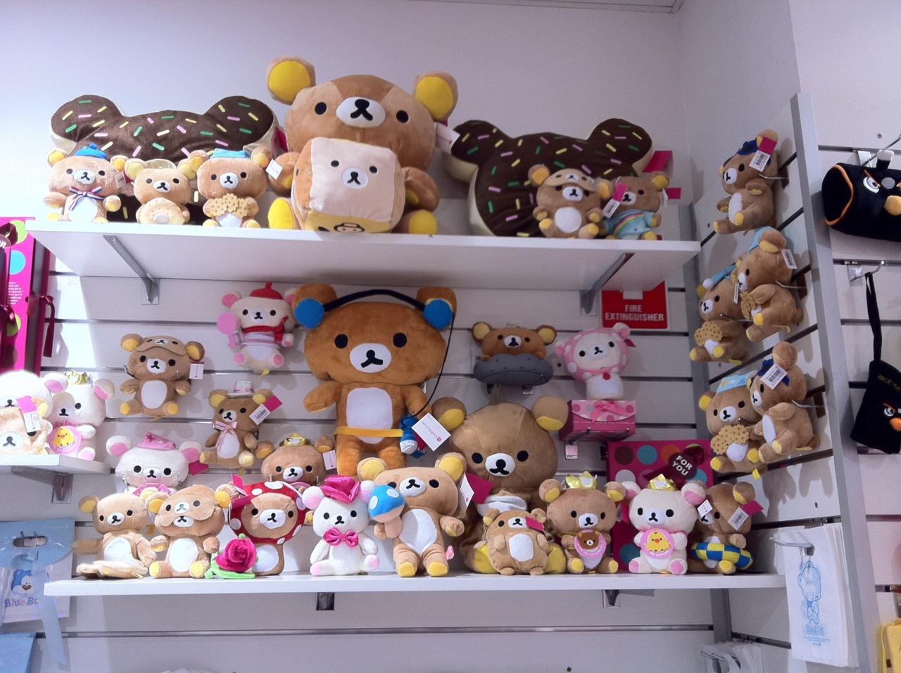 rilakkuma's at morning glory