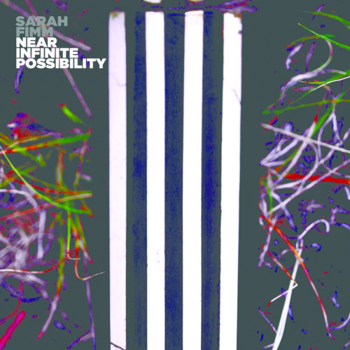 Sarah Fimm - Near Infinite Possibily