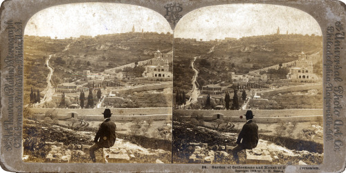 Garden of Gethsemane and Mount of Olives, Jerusalem, 1904. A 107 years old stereogram, by The Universal Photo Art Co. Philadelphia, Naperville, Illinois. Photo: Carlton Harlow Graves (nb: stereoviews issued under his own name are extremely rare).