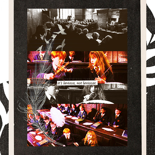 "bottomofmysoul:   Harry Potter Challenge [x]  Day 12: Favorite HP&TPS moment →""It's leviOsa, not leviosAR!"""