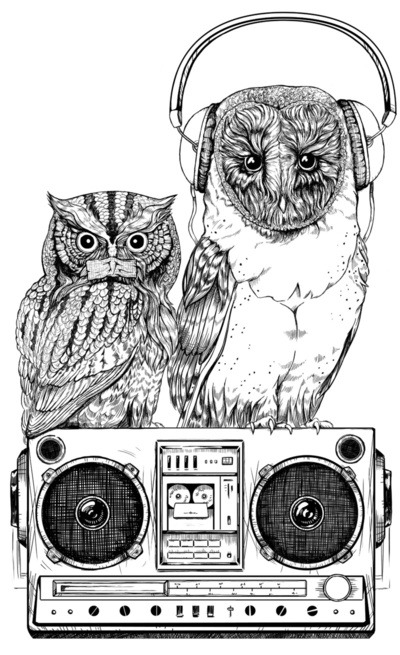 visualgraphic:  Chillin Owls