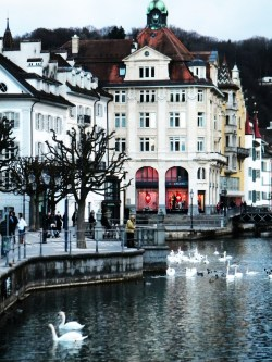 taken in Lucerne Switzerland
