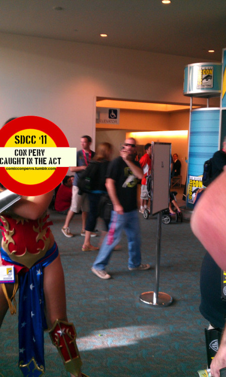 "Oh right! I forgot this shot; it was sent to me from artist @geoffsebesta. Here we have a woman who is hitting up the con in her REALLY awesome Wonder Woman costume (seriously, good job, faceless lady!), and someone sees her, and is like, ""You look rad, I'd like to take your photo,"" and she's like ""Sure"" and strikes a pose a la the real Wonder Woman, and this guy, wandering back to the exhibition hall from maybe getting a cookie at Mrs. Fields is like OH SHIT I CAN'T LET THIS PASS; and whips out his camera phone for a grainy, probably blurry shot of this woman's ass. For no other reason than the fact that she is turned around, and WHY NOT RIGHT? IT'S A FREE COUNTRY, SHUT UP."