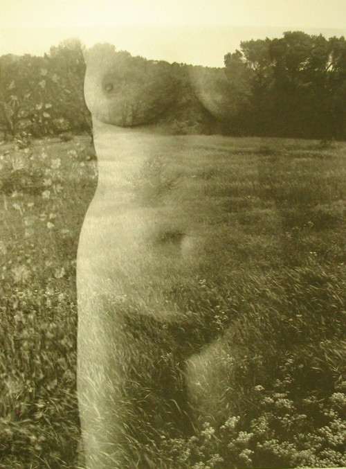 Eleanor, Aix-en-Provence, 1958 by Harry Callahan * from Art Icono
