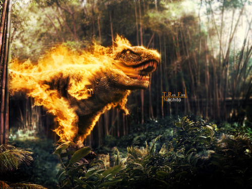 ianbrooks:  T-Rex Fire by Nachito This is the original T-Rex breathing fires from his pores. But the picture I originally came across was this:  (via: obviouswinner)