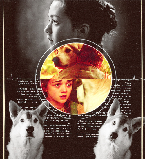 thebookpenguin:  THE STARK DIREWOLVES: ARYA AND NYMERIA  Nymeria was waiting for her in the guardroom at the base of the stairs. She bounded to her feet as soon as she caught sight of Arya. Arya grinned. The wolf pup loved her, even if no one else did.