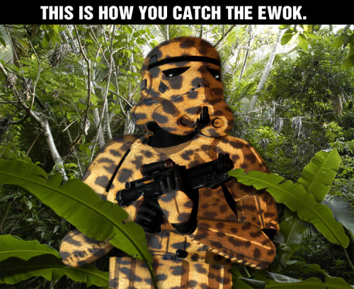 I figure, if you want to catch an Ewok you need to blend into their environment.