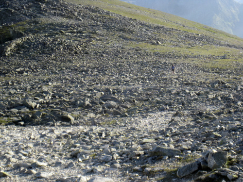 Yours Truly walking up Carnedd Dafydd from Pen yr Ole Wen 14.07.11 - there's Wally